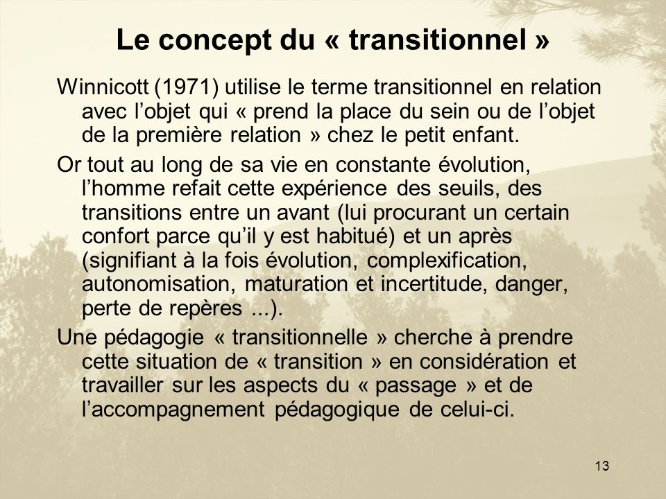 Le concept du « transitionnel »