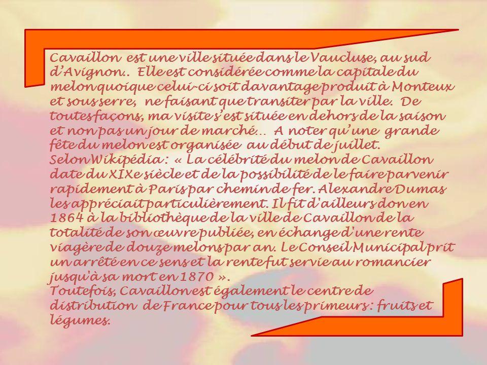 Cavaillon est une ville située dans le Vaucluse, au sud d'Avignon