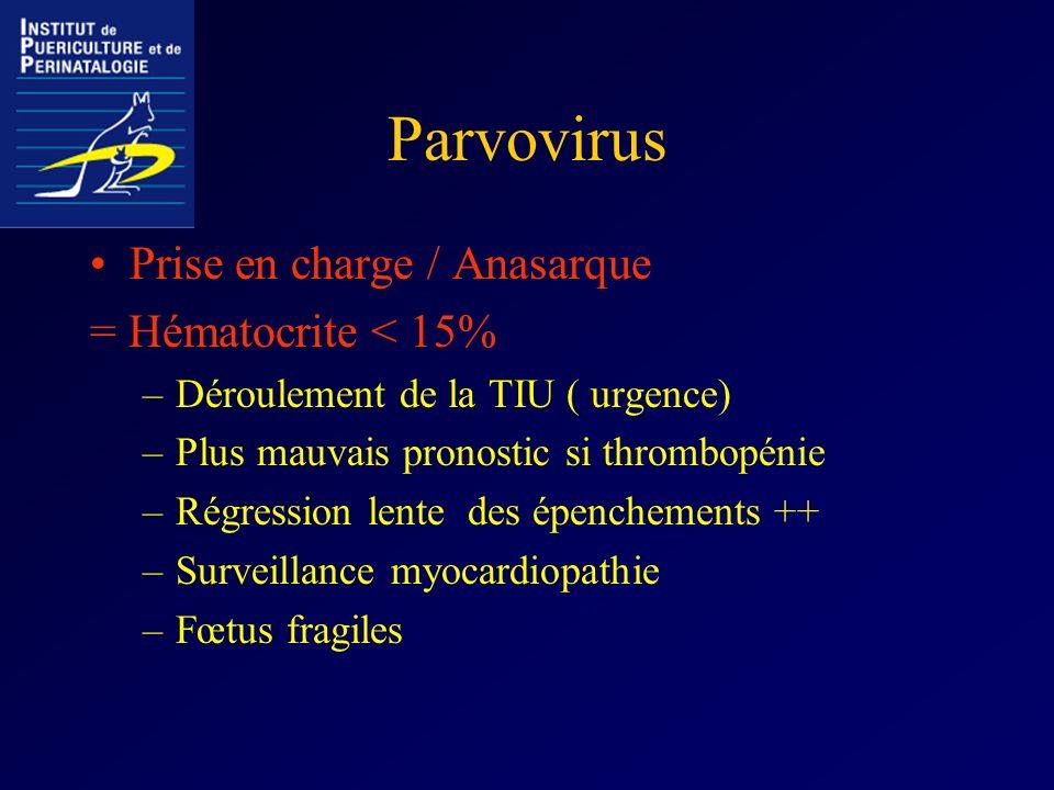 Parvovirus Prise en charge / Anasarque = Hématocrite < 15%