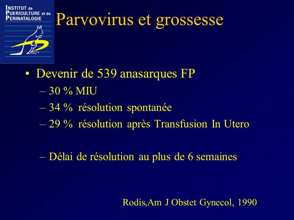 Parvovirus et grossesse
