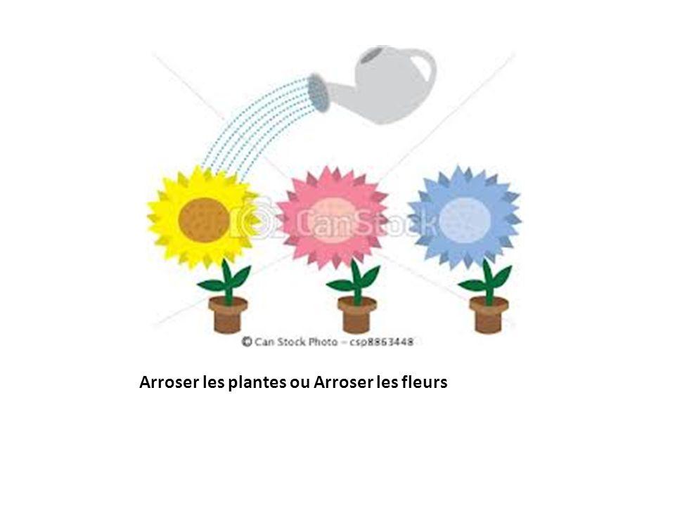 Arroser les plantes ou Arroser les fleurs