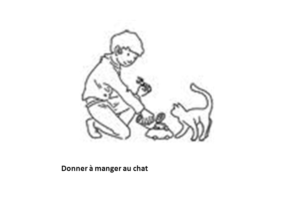 Donner à manger au chat