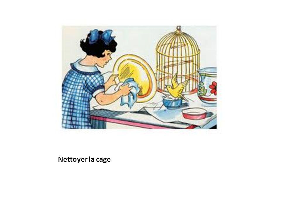Nettoyer la cage