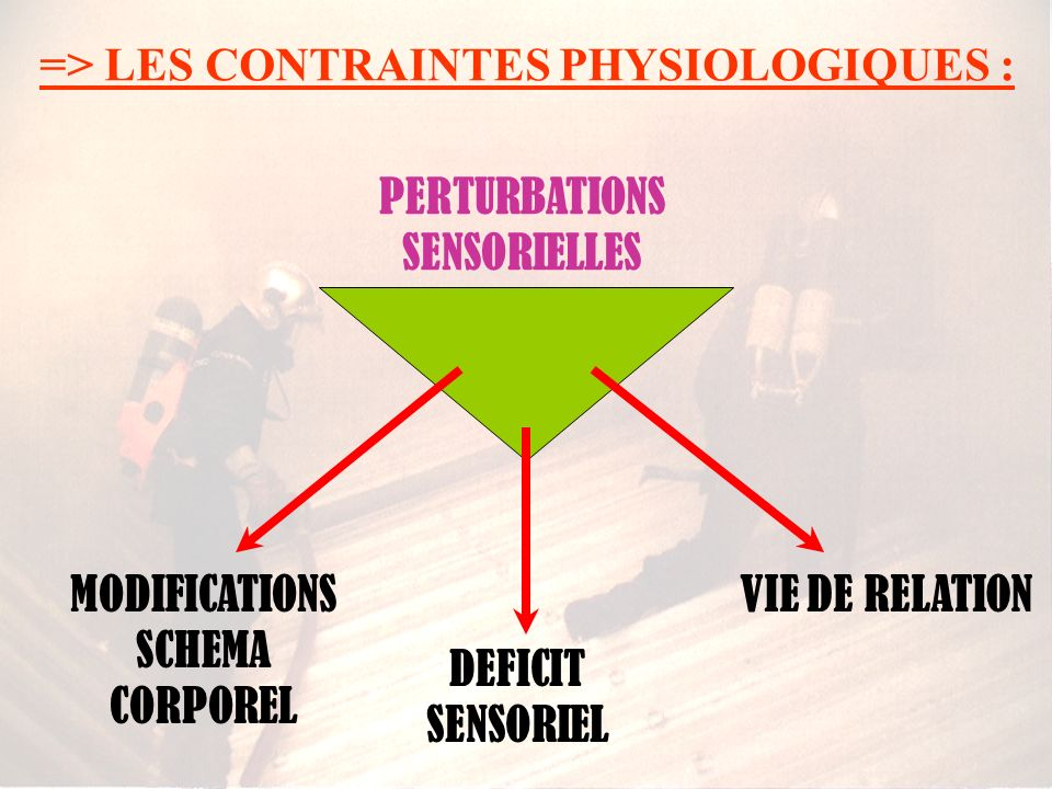 PERTURBATIONS SENSORIELLES MODIFICATIONS SCHEMA CORPOREL