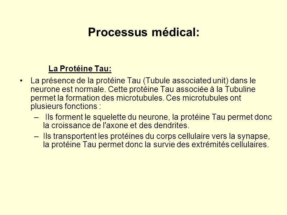 La Protéine Tau: Processus médical: