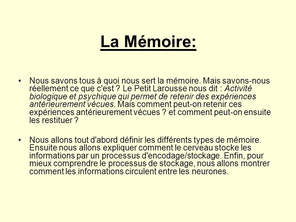 La Mémoire: