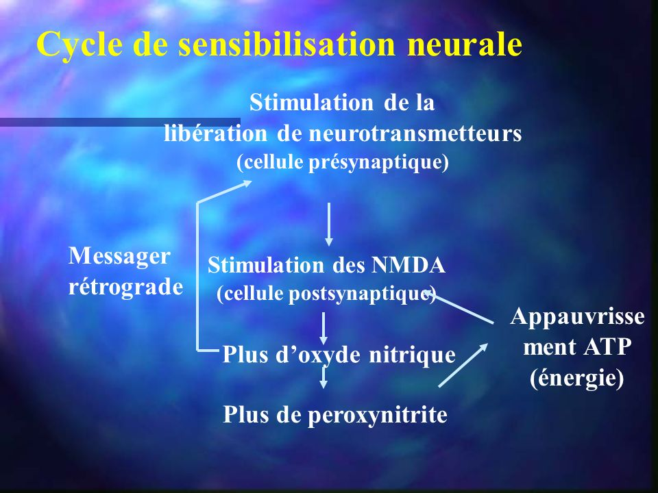 Cycle de sensibilisation neurale