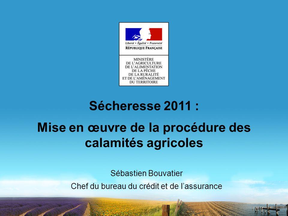 Mise en œuvre de la procédure des calamités agricoles