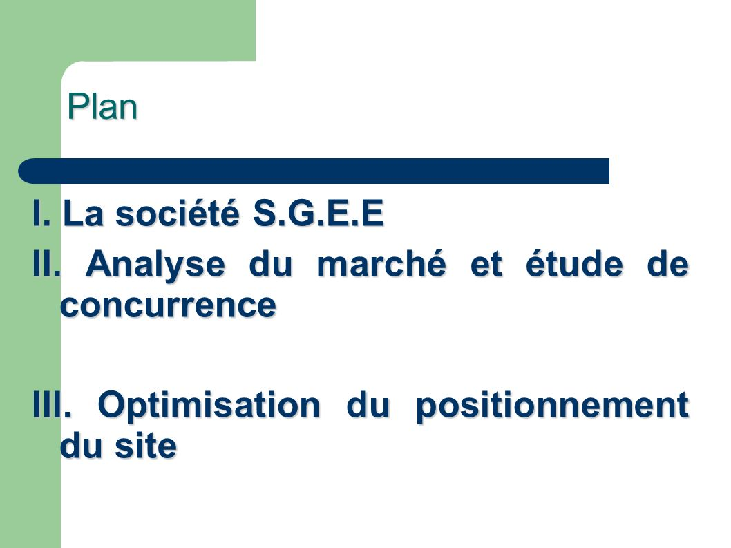 Plan I. La société S.G.E.E. II. Analyse du marché et étude de concurrence.