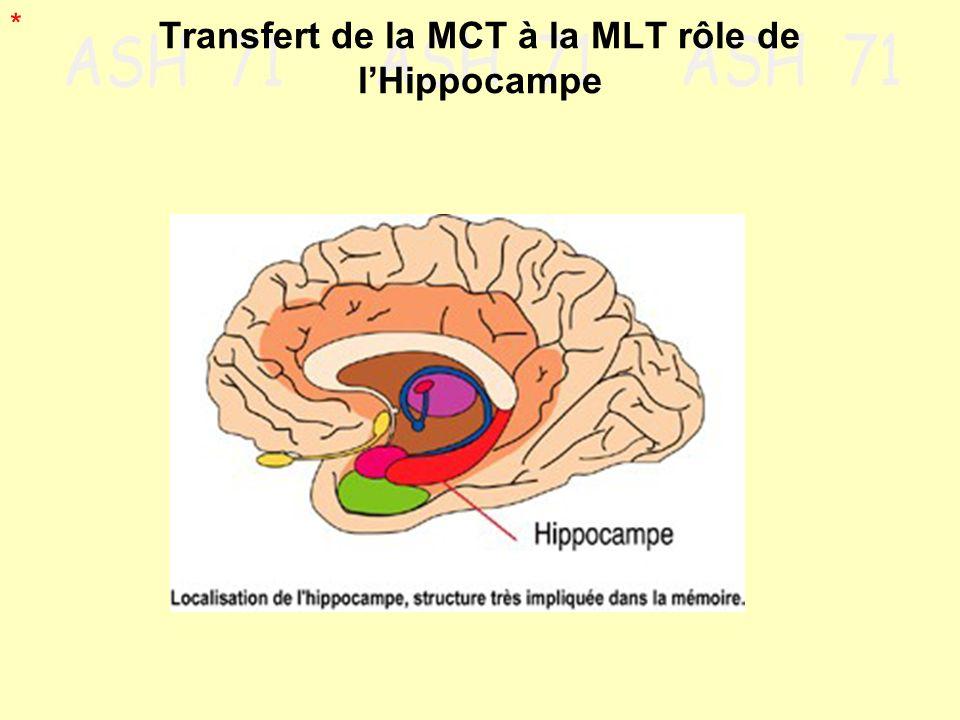 Transfert de la MCT à la MLT rôle de l'Hippocampe