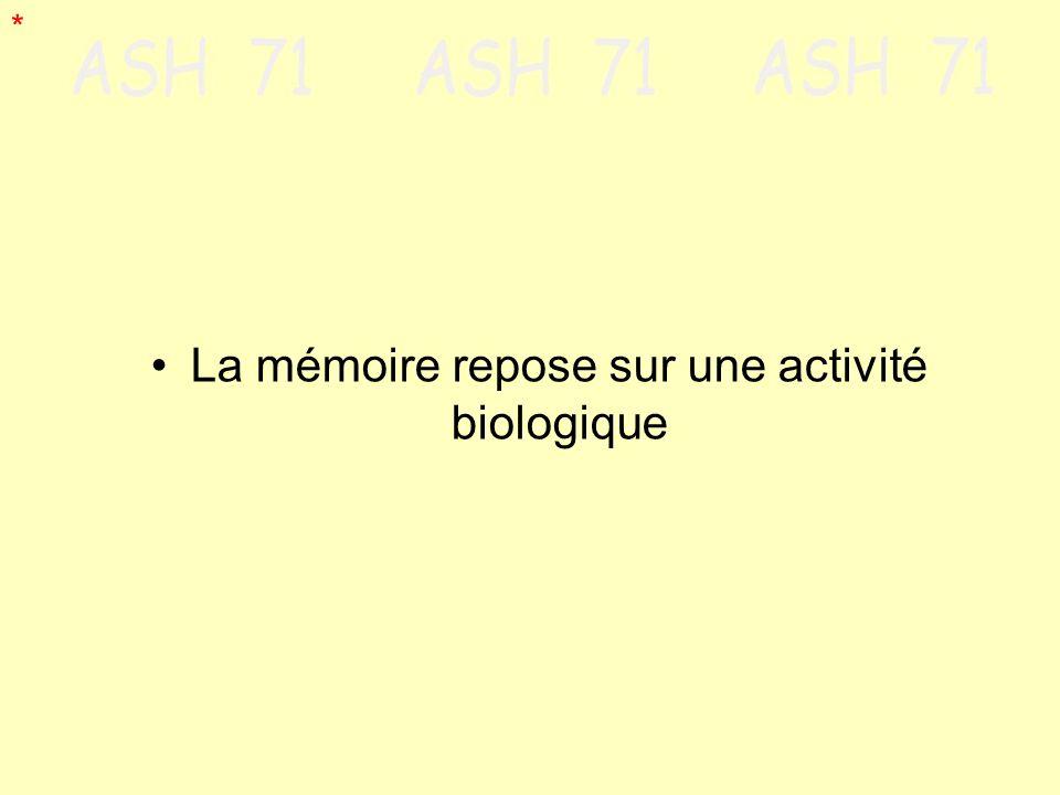 La mémoire repose sur une activité biologique