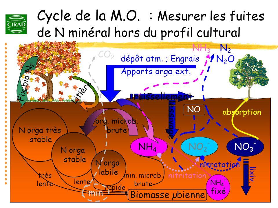 Cycle de la M.O. : Mesurer les fuites de N minéral hors du profil cultural