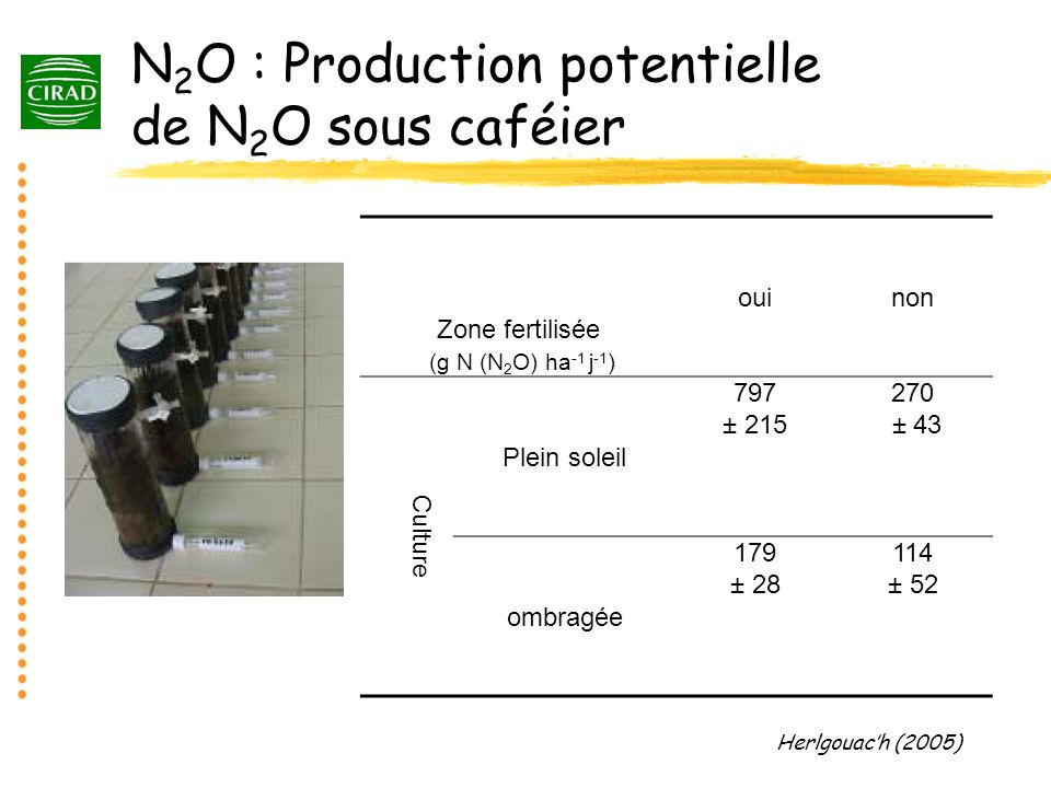 N2O : Production potentielle de N2O sous caféier