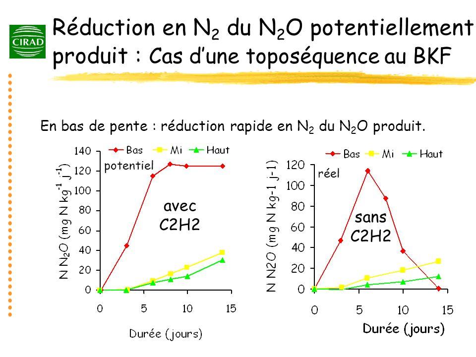 Réduction en N2 du N2O potentiellement produit : Cas d'une toposéquence au BKF