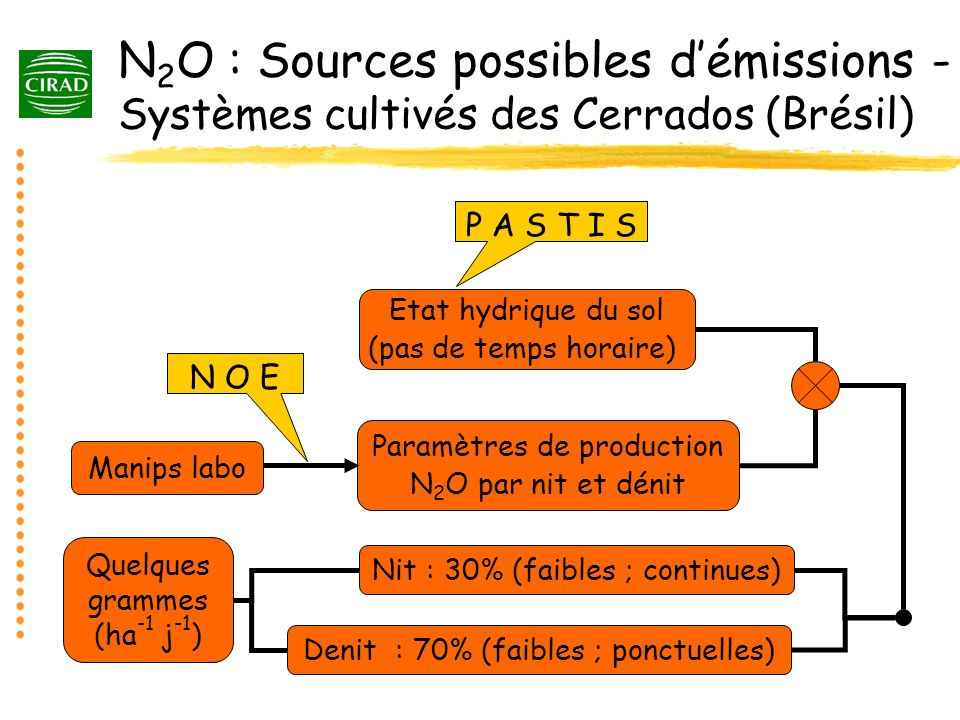 N2O : Sources possibles d'émissions - Systèmes cultivés des Cerrados (Brésil)