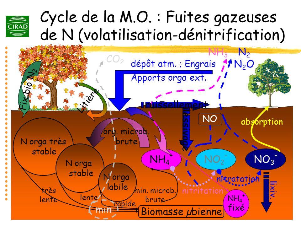 Cycle de la M.O. : Fuites gazeuses de N (volatilisation-dénitrification)