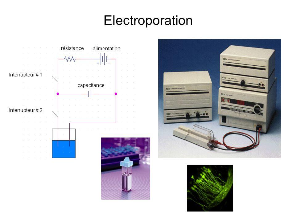 Electroporation résistance alimentation Interrupteur # 1 capacitance