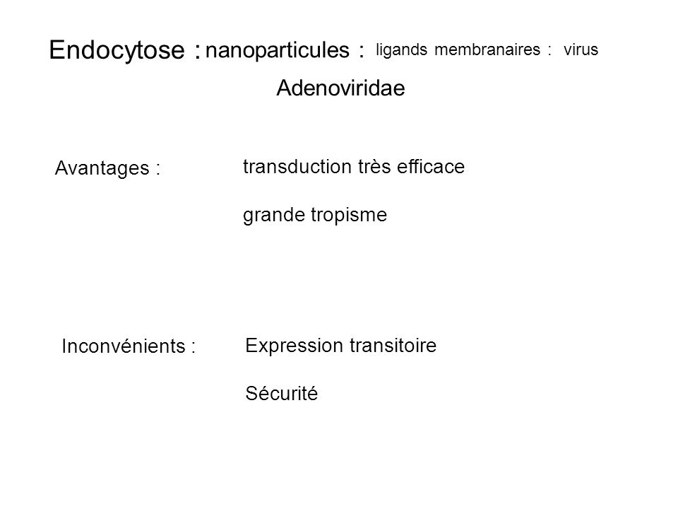 transduction très efficace grande tropisme
