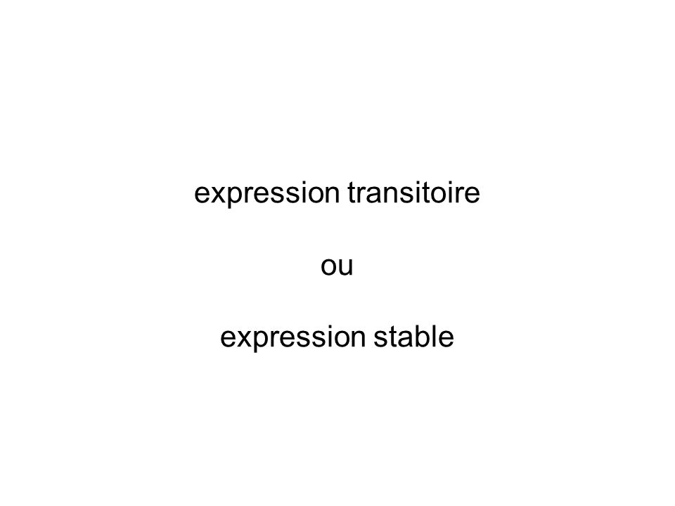 expression transitoire