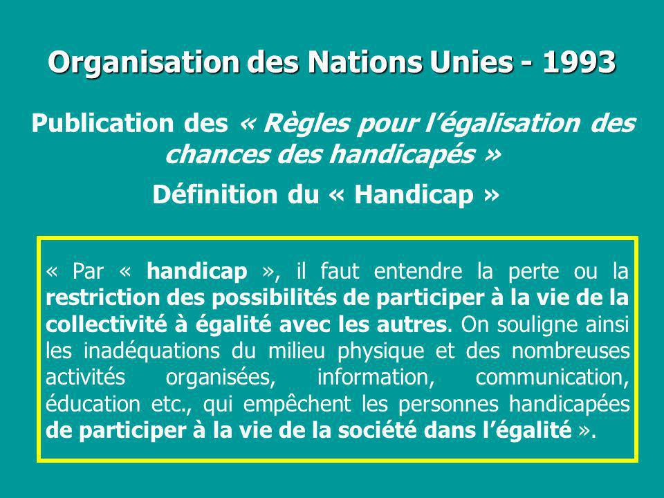Organisation des Nations Unies - 1993