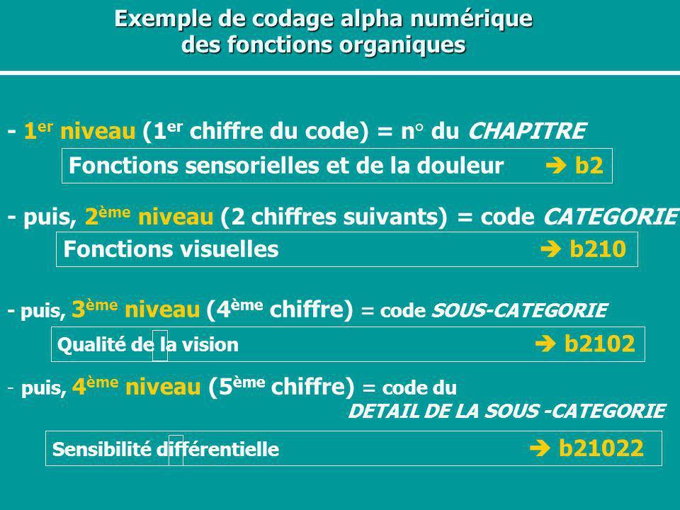 Exemple de codage alpha numérique des fonctions organiques