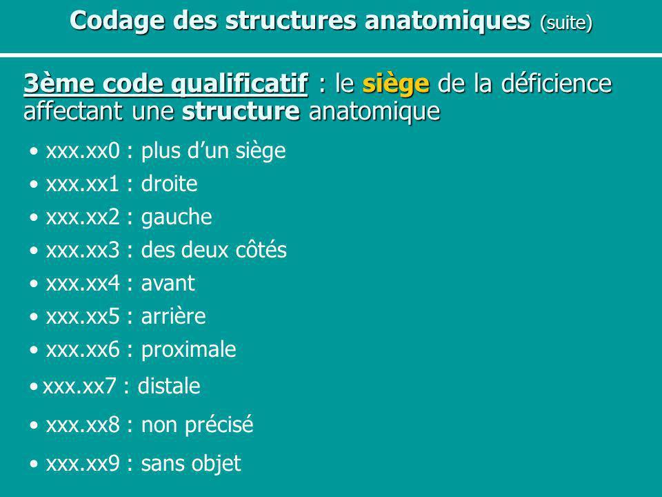 Codage des structures anatomiques (suite)