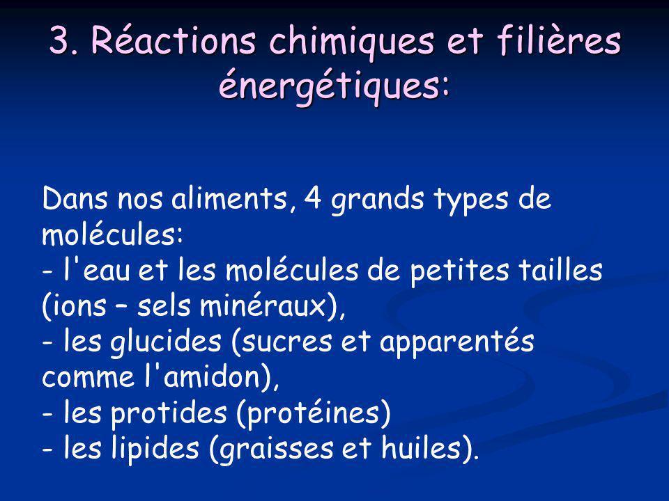3. Réactions chimiques et filières énergétiques: