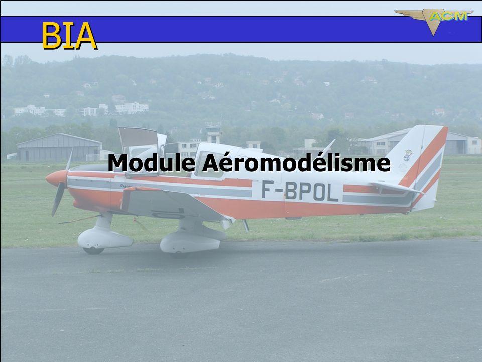 BIA Module Aéromodélisme