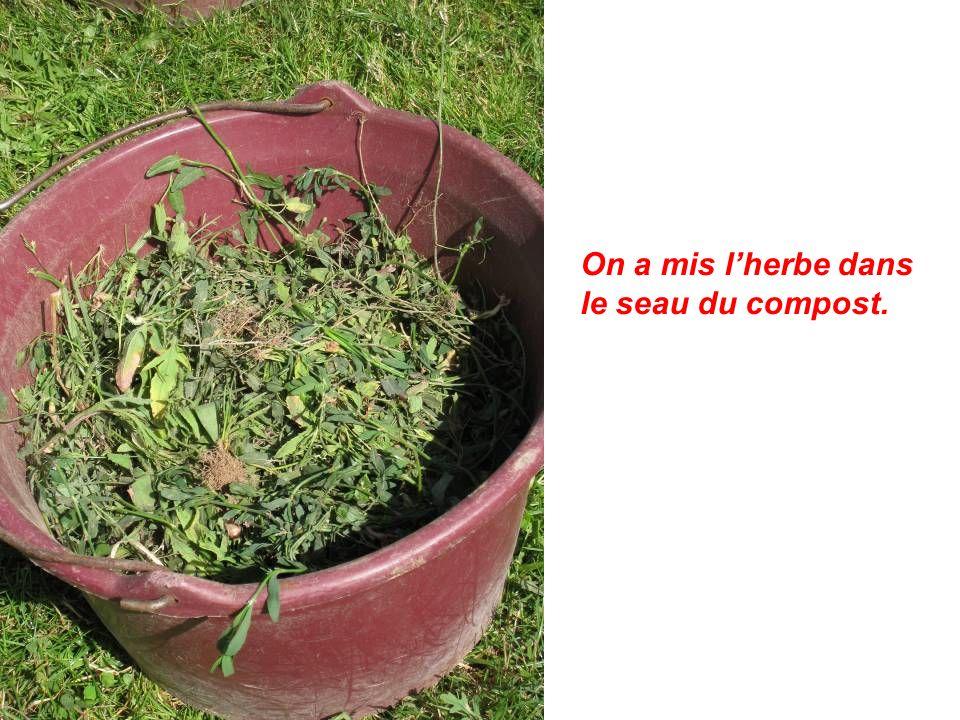 On a mis l'herbe dans le seau du compost.