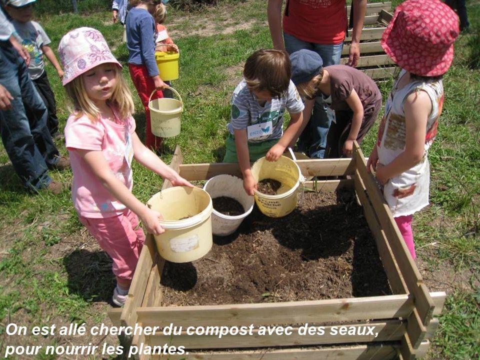 On est allé chercher du compost avec des seaux,