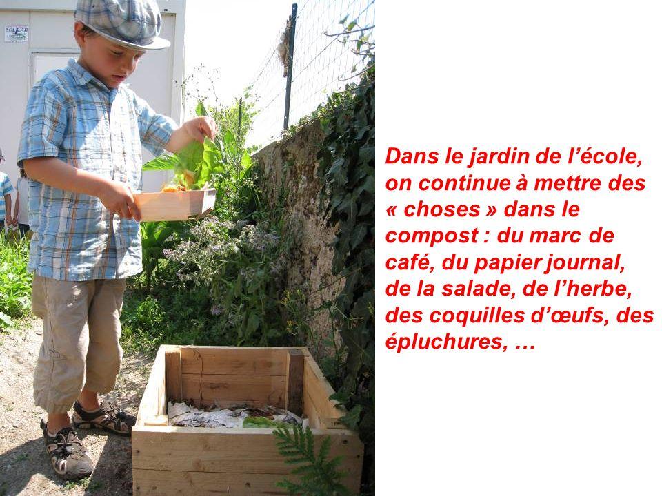 Dans le jardin de l'école, on continue à mettre des « choses » dans le compost : du marc de café, du papier journal, de la salade, de l'herbe, des coquilles d'œufs, des épluchures, …