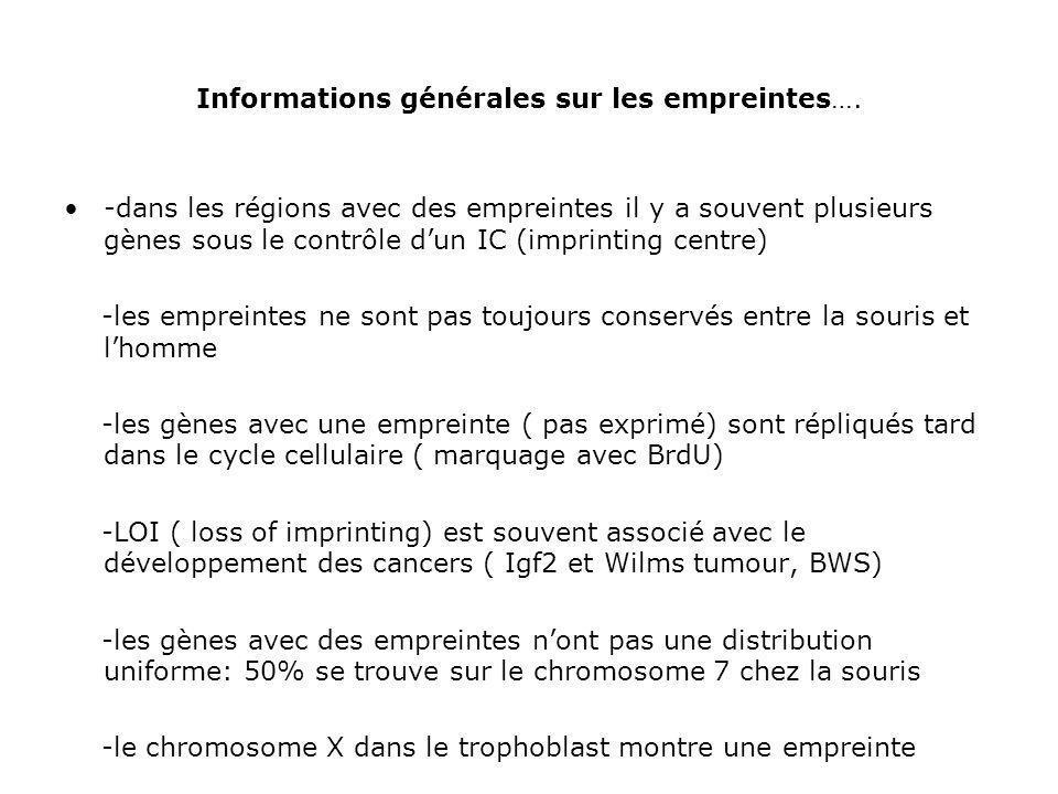 Informations générales sur les empreintes….
