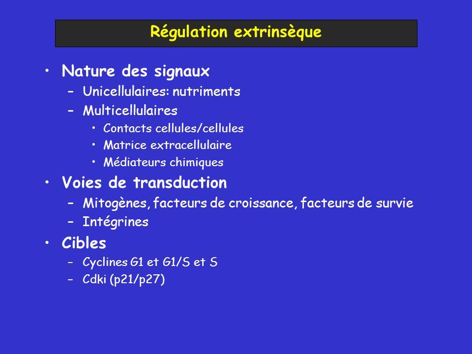 Régulation extrinsèque