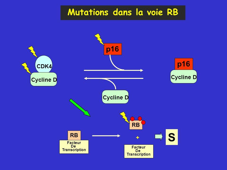 Mutations dans la voie RB