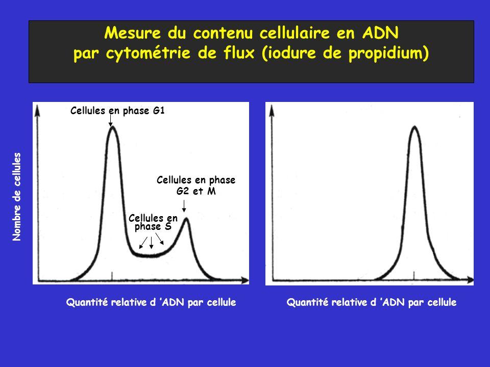 Mesure du contenu cellulaire en ADN