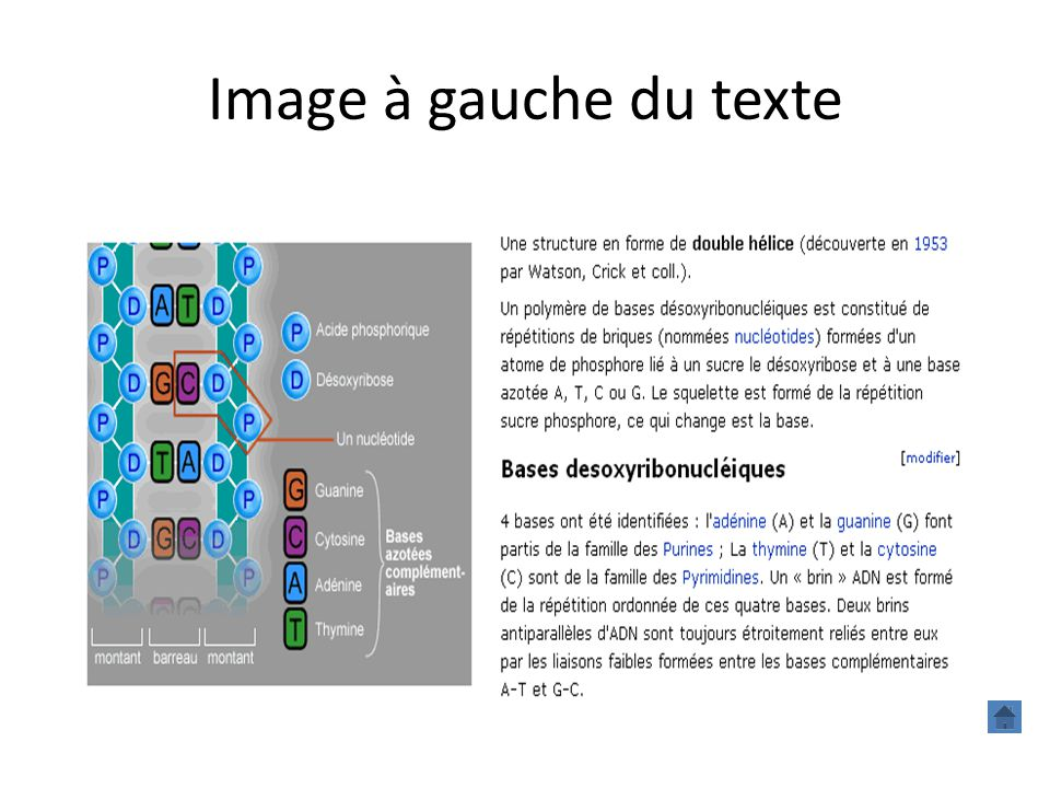 Image à gauche du texte