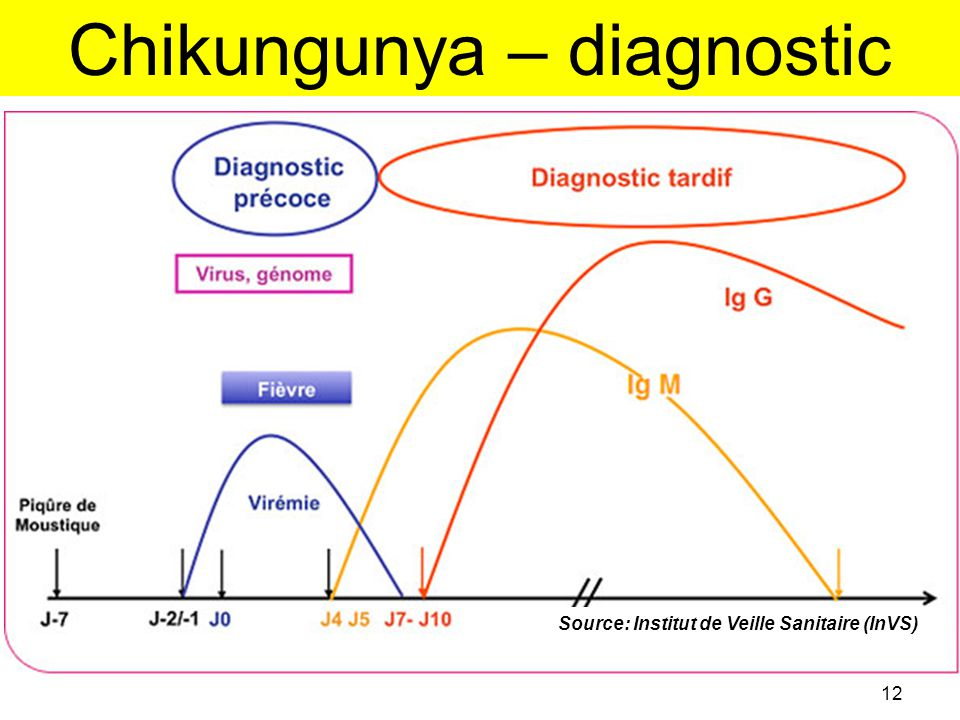 Chikungunya – diagnostic