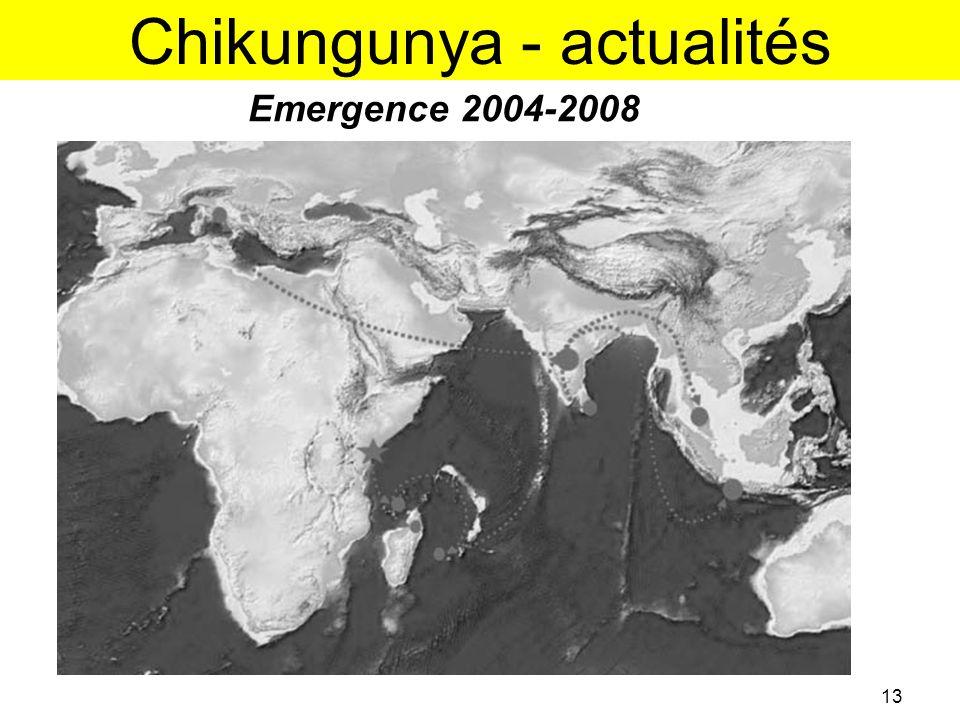 Chikungunya - actualités