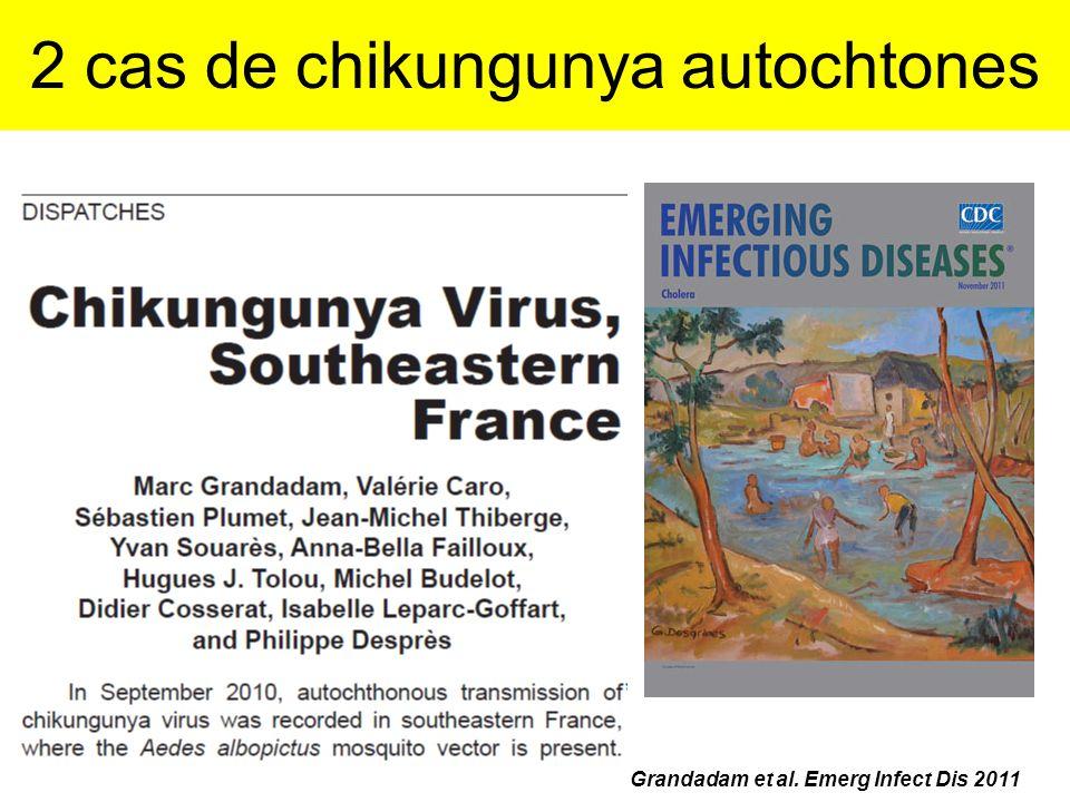 2 cas de chikungunya autochtones