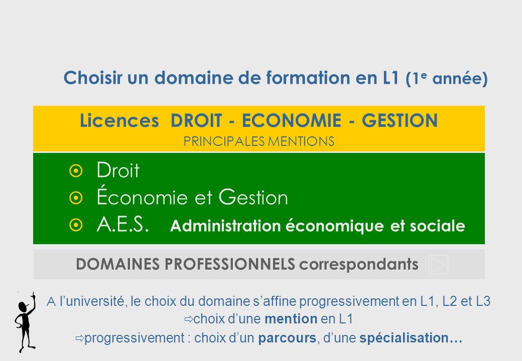 A.E.S. Administration économique et sociale