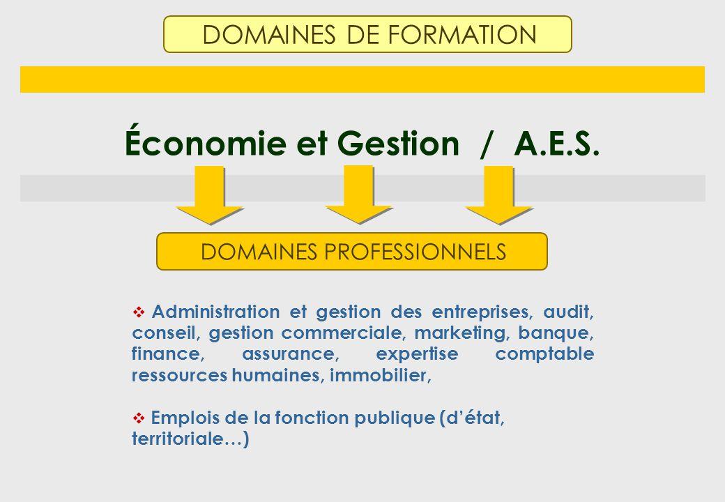 Économie et Gestion / A.E.S.