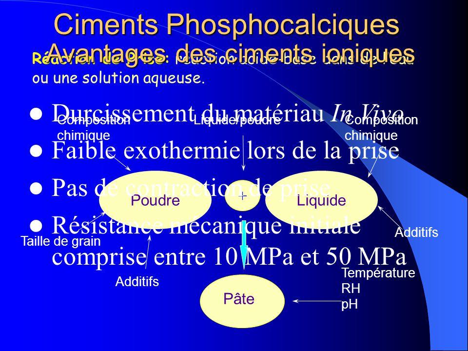 Ciments Phosphocalciques