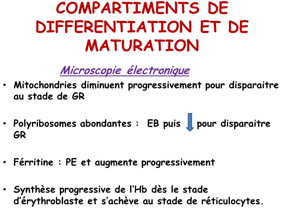 COMPARTIMENTS DE DIFFERENTIATION ET DE MATURATION