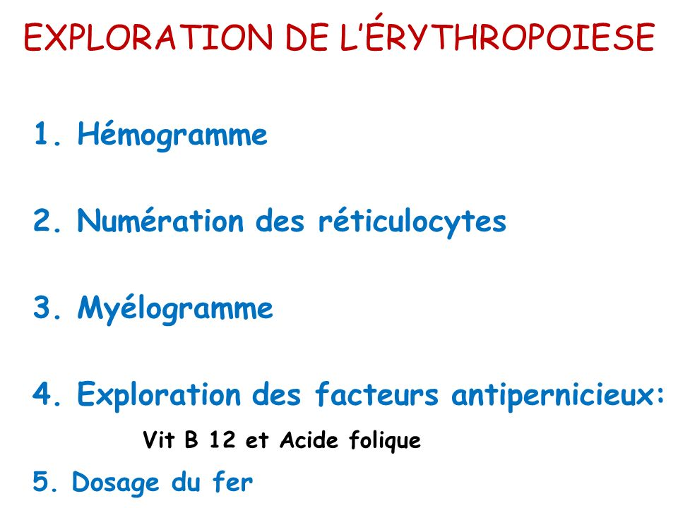 EXPLORATION DE L'ÉRYTHROPOIESE