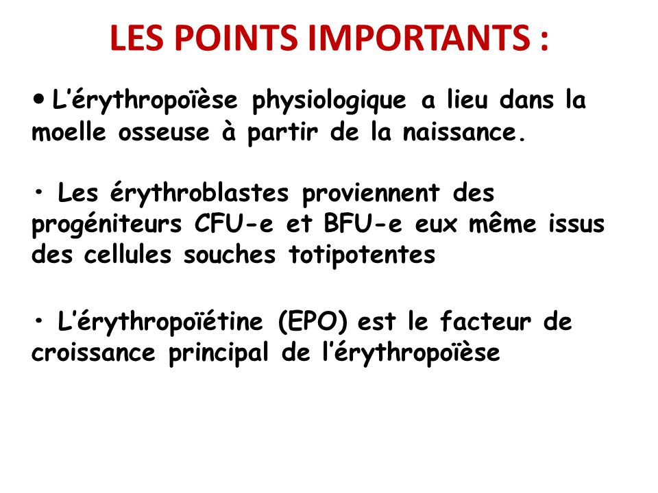 LES POINTS IMPORTANTS :