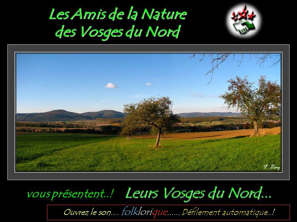 Les Amis de la Nature des Vosges du Nord