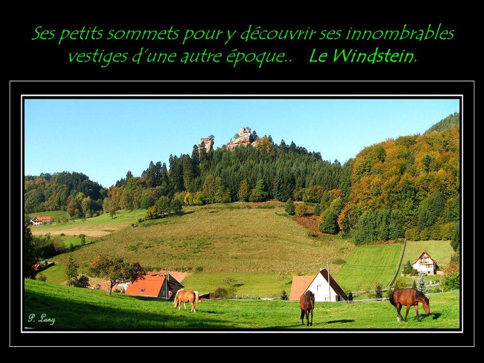 Ses petits sommets pour y découvrir ses innombrables vestiges d'une autre époque.. Le Windstein.