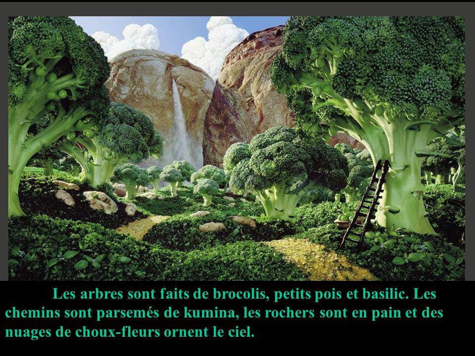 Les arbres sont faits de brocolis, petits pois et basilic