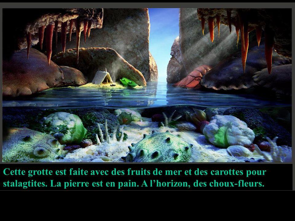 Cette grotte est faite avec des fruits de mer et des carottes pour stalagtites.
