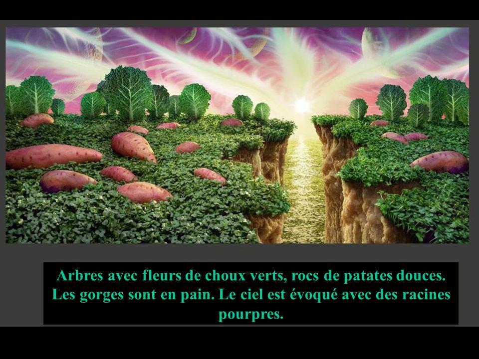Arbres avec fleurs de choux verts, rocs de patates douces